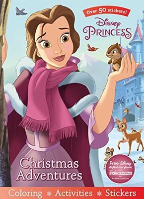 Princess Christmas Adventures (Paperback)