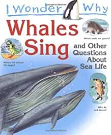 I Wonder Why Whales Sing (Paperback)
