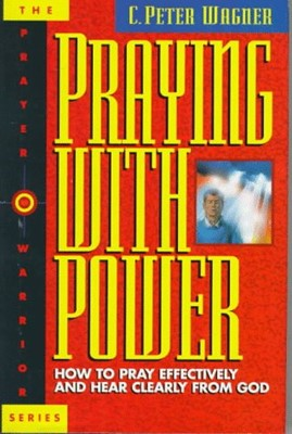 Praying With Power (Hardcover)