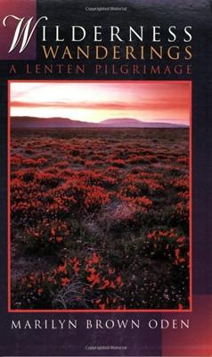 Wilderness Wanderings (Paperback)