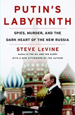 Putin's Labyrinth (Paperback)