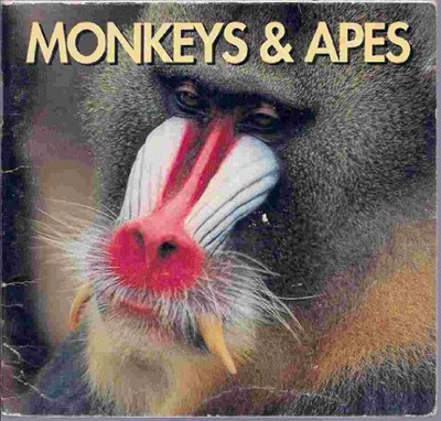 Monkeys and Apes (Paperback)