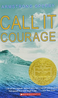 Call It Courage (Paperback)