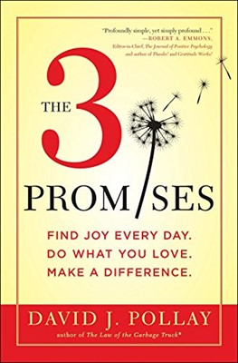 The 3 Promises (Hardcover)